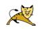 tomcat logo
